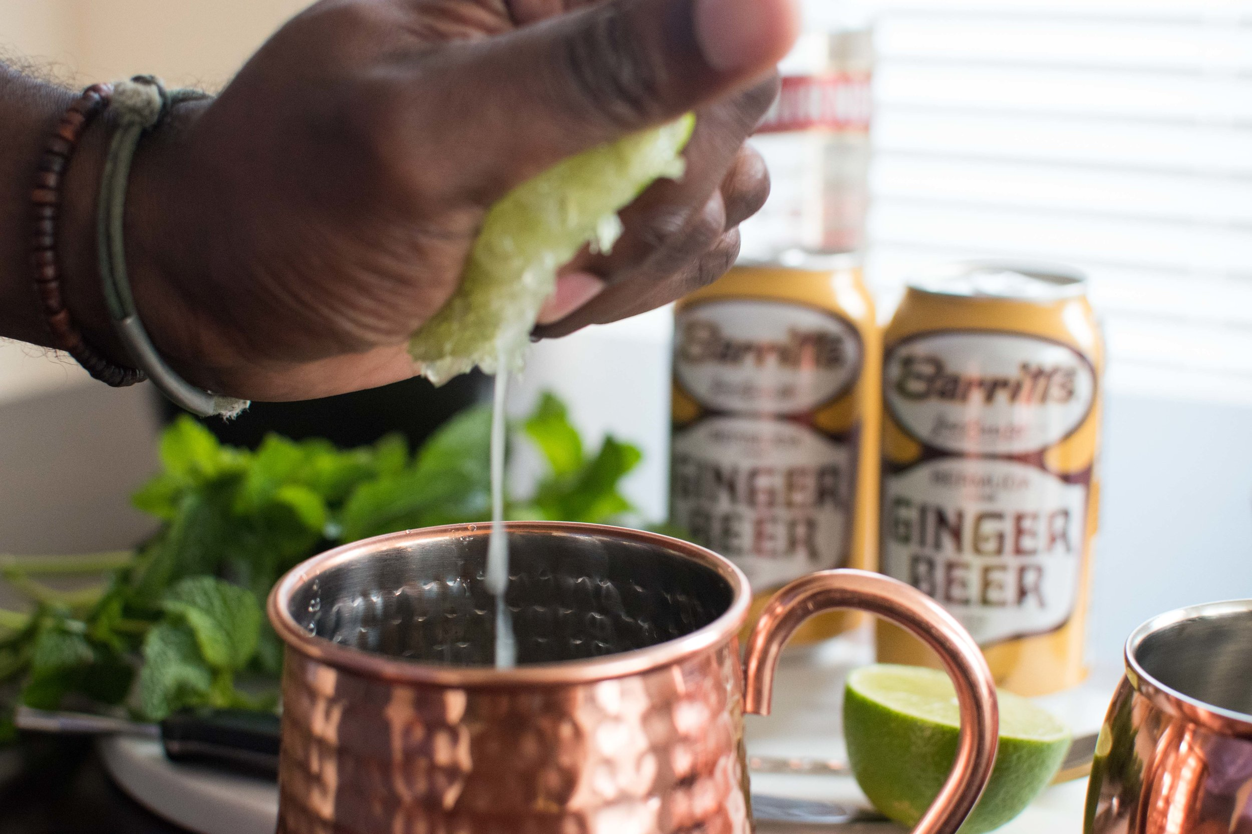 Moscow Mule Recipe Barritts Ginger Beer-22.jpg