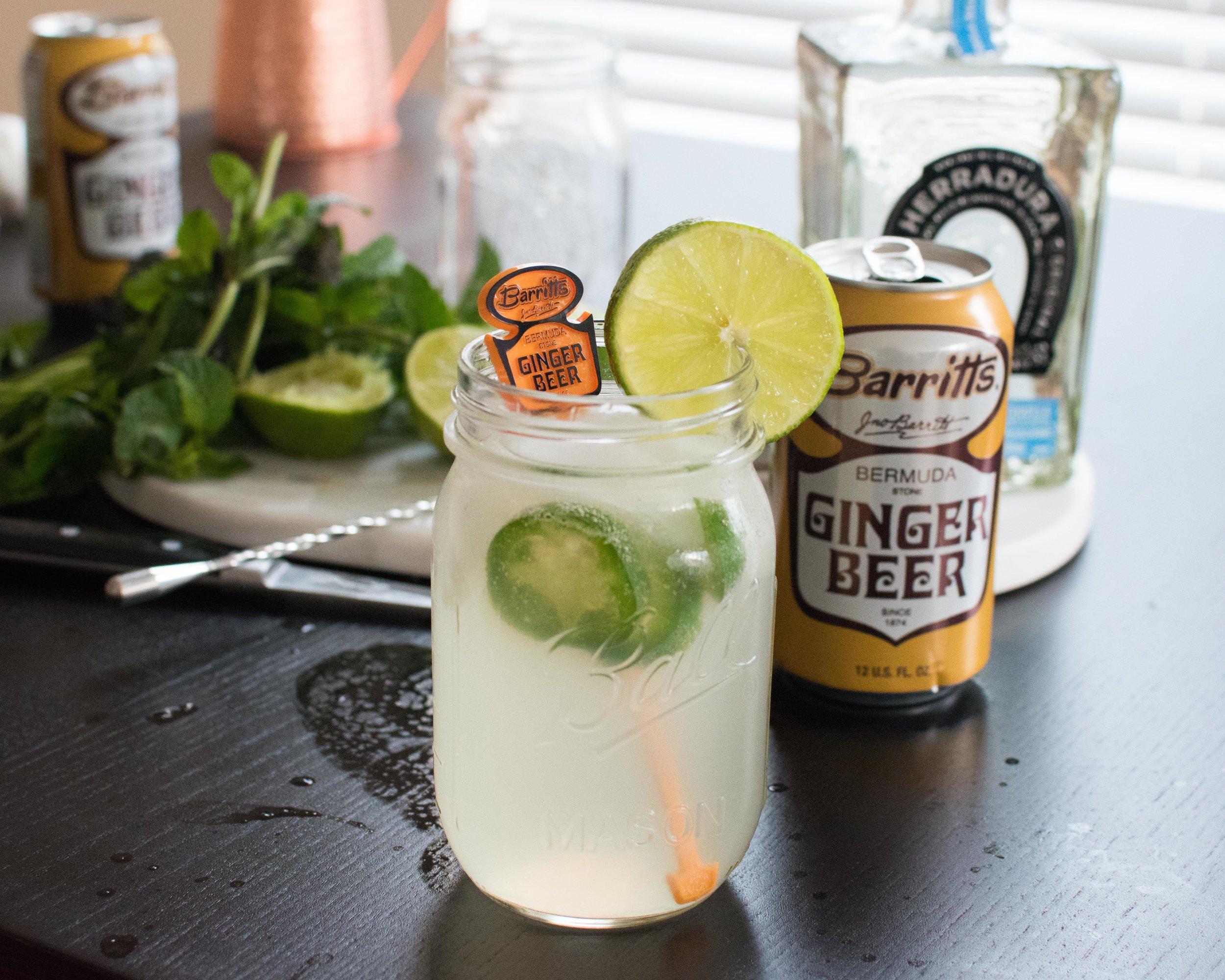 Mexican Mule Recipe Barritts Ginger Beer-24.jpg