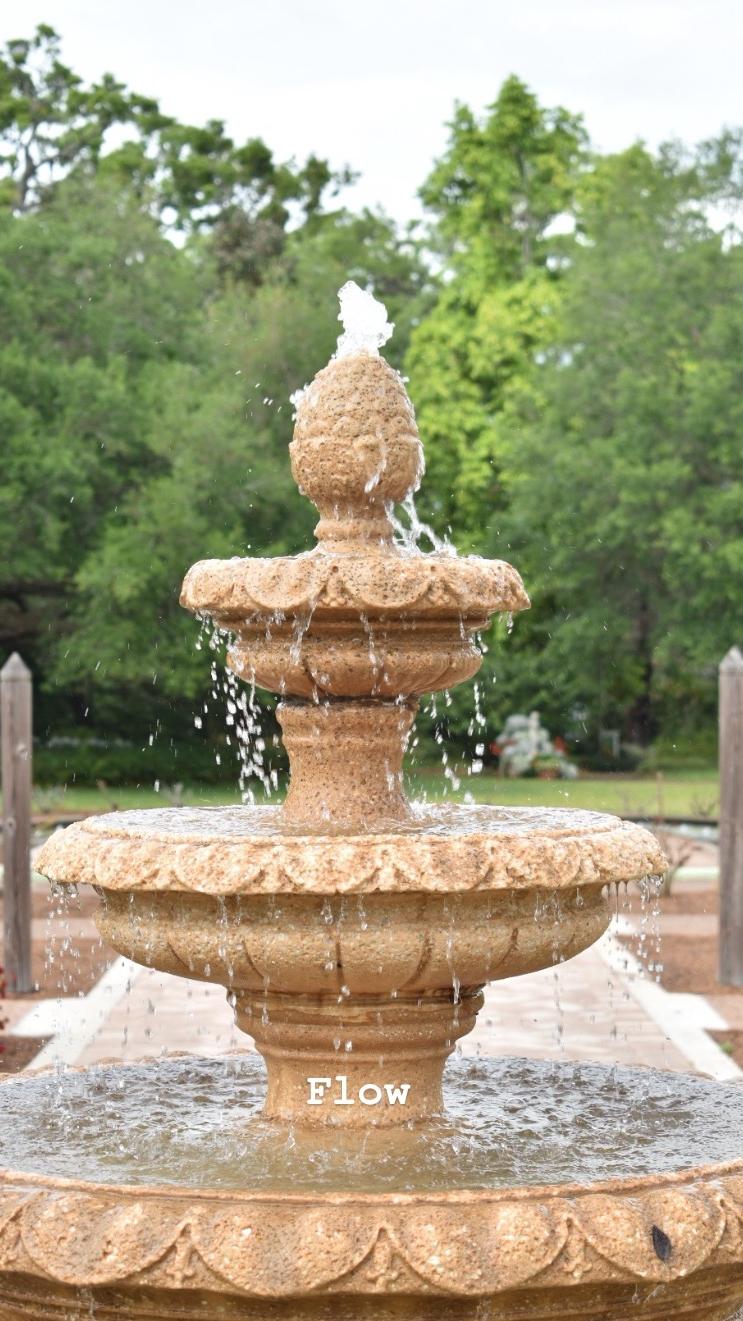 Leu Gardens Orlando Things to Do (1).jpg