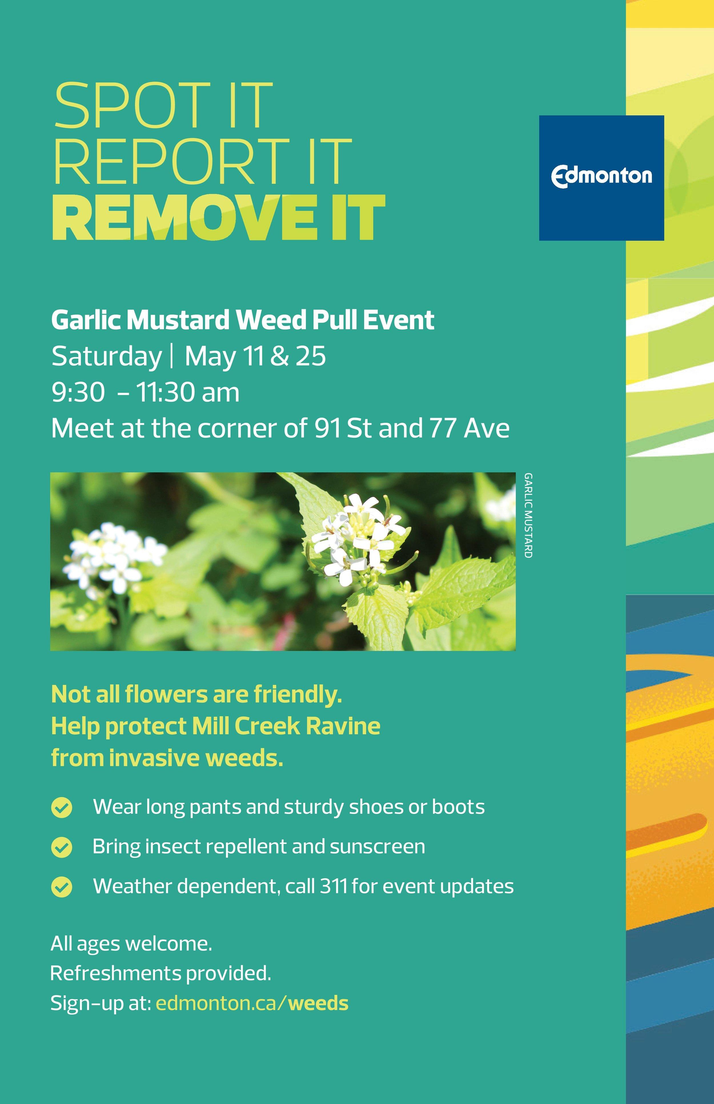2019 Noxious Weeds MillCreek Poster.jpg