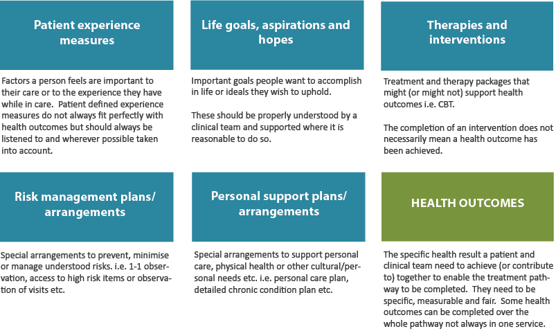 Distinguishing health outcomes and other important elements of a care plan