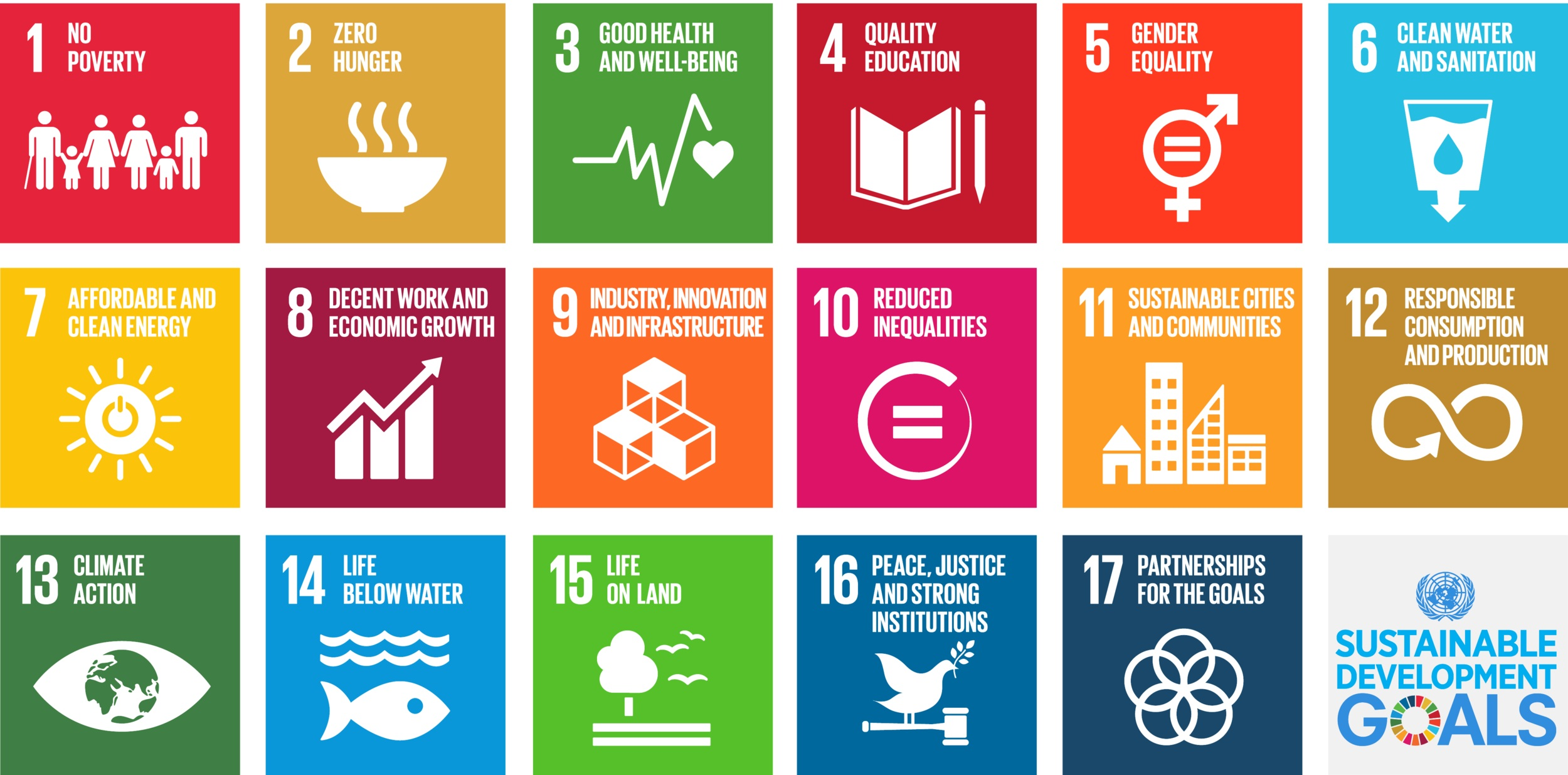 The UN's 17 Sustainable Development Goals