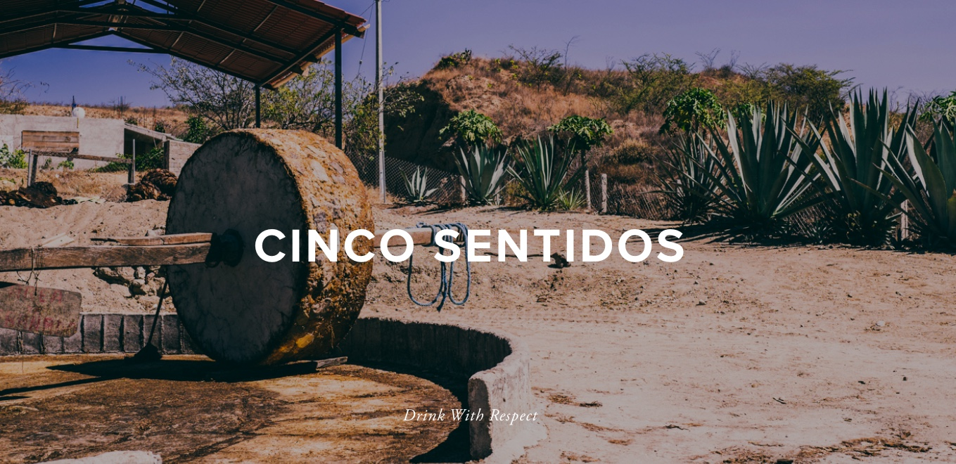 Cinco_Sentidos_webphoto.jpeg