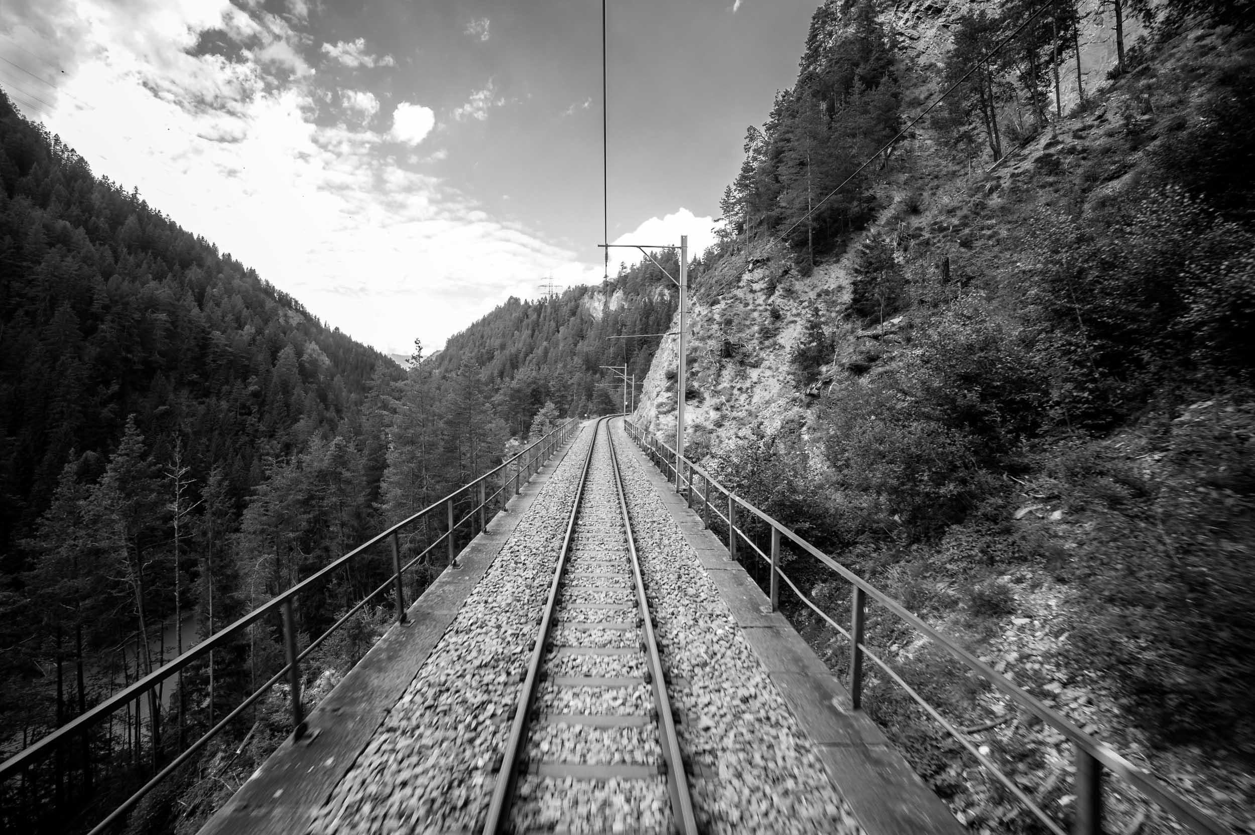 Swiss-2.jpg