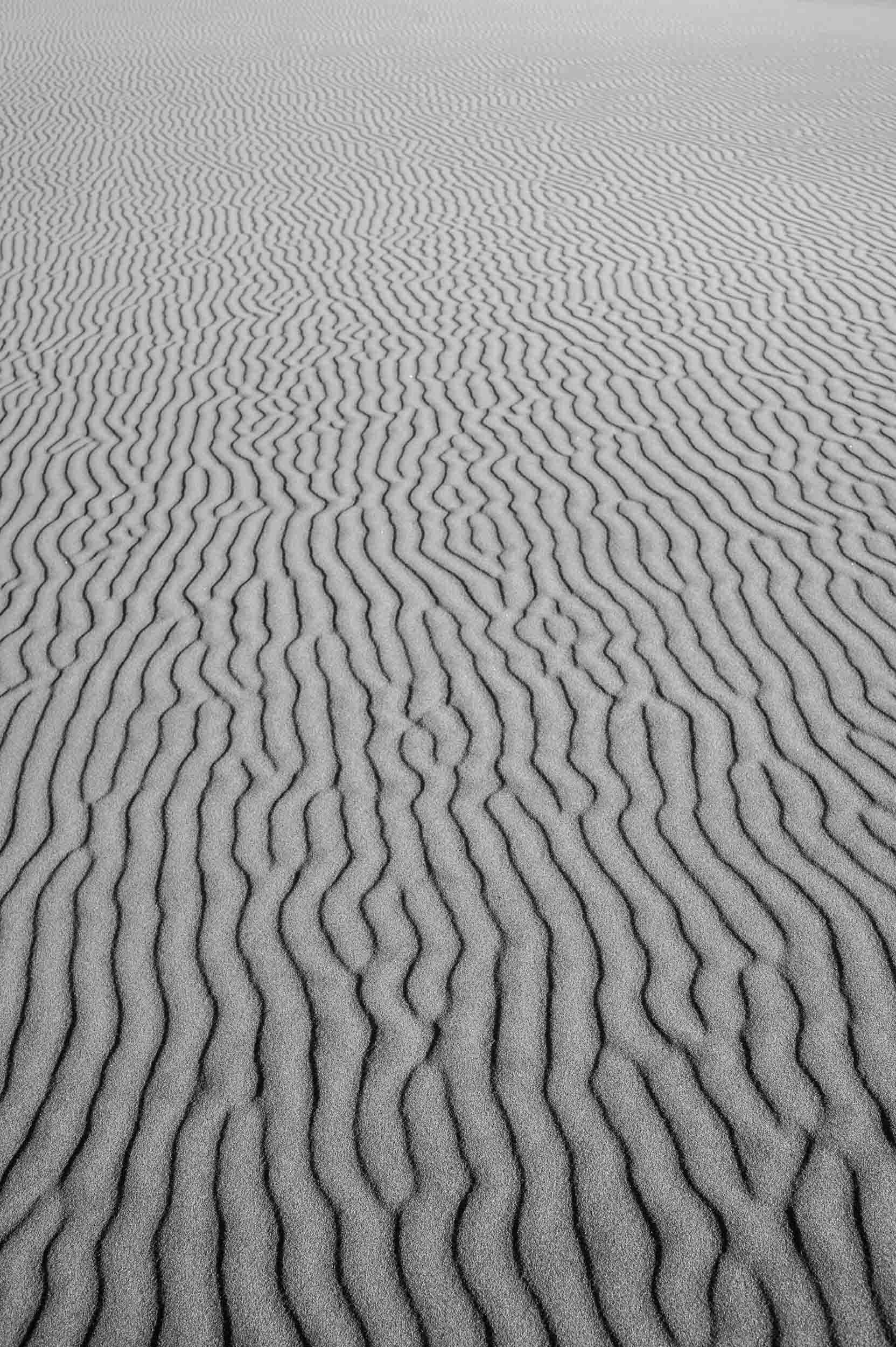 Sand Patterns-2.jpg