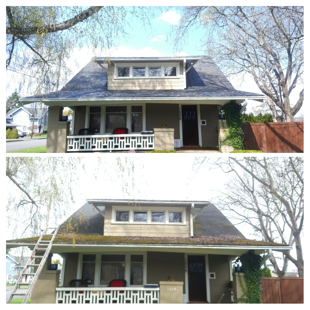 before after roof .jpg