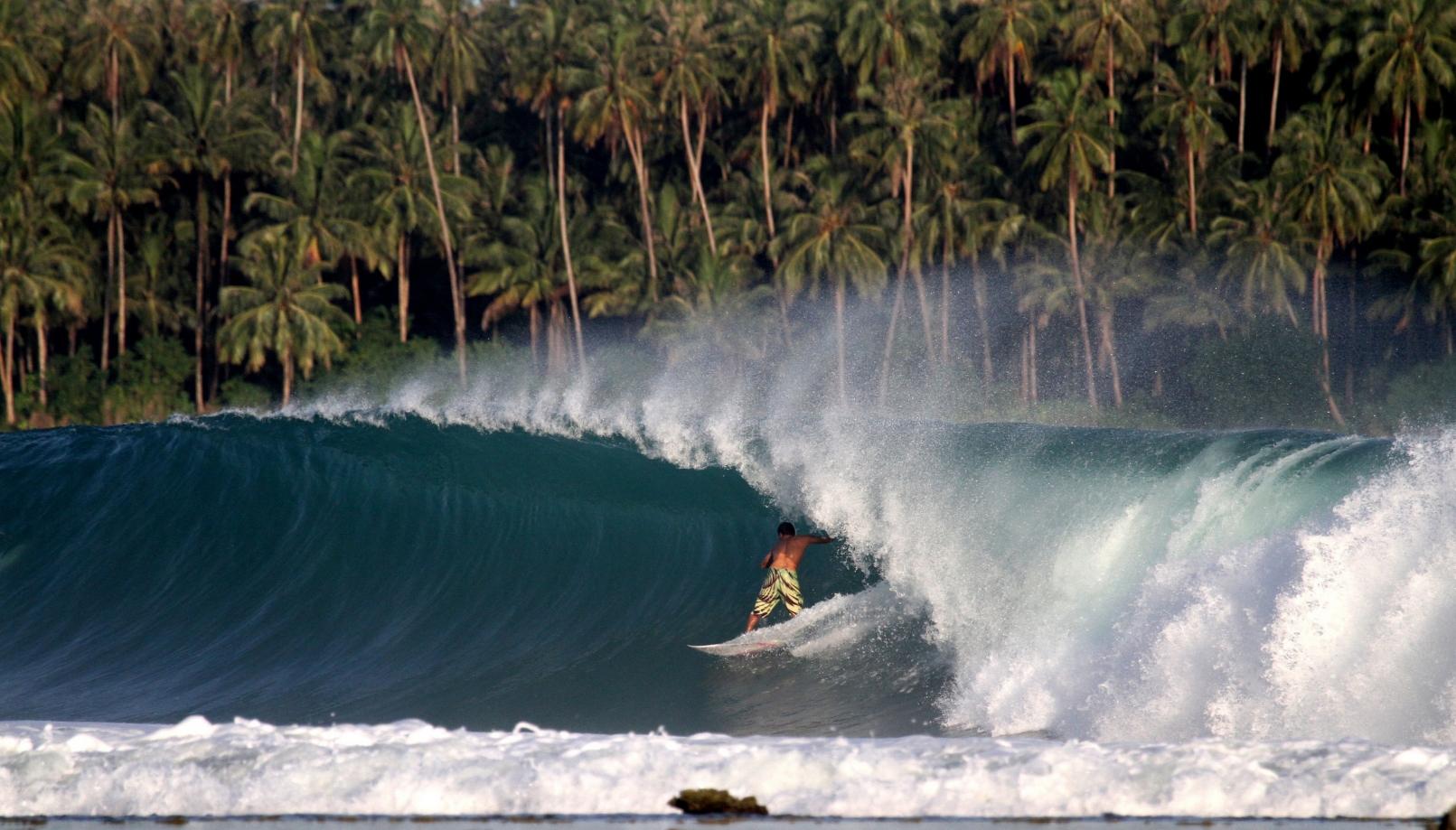 Nias Surf (Niasurf) Home Thumbnail