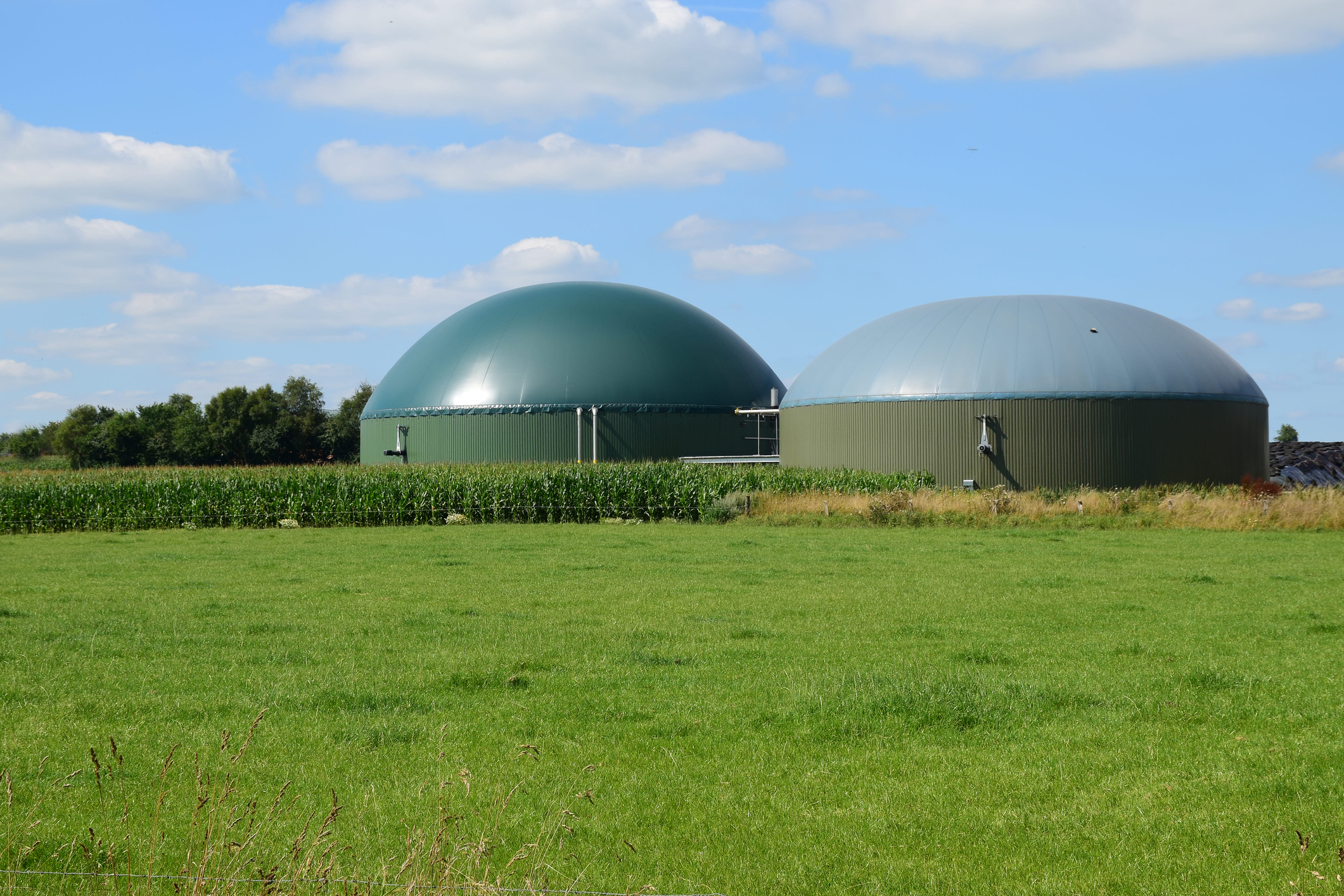 AQQA®  can improve the effluent quality of fermentation residues and from biogas plants.  More...