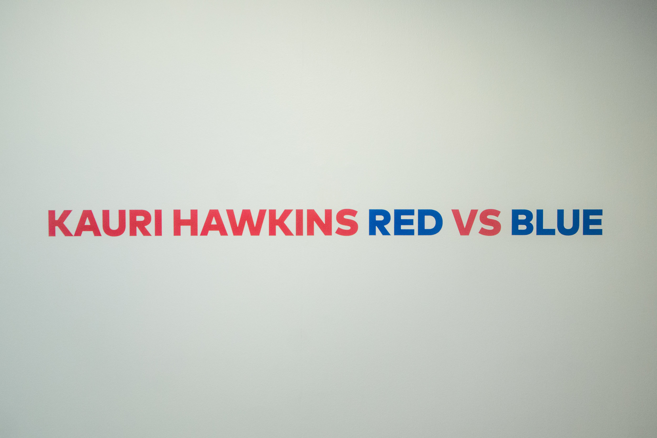 Red vs Blue -17.jpg