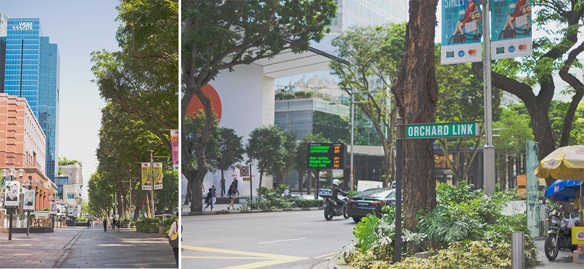 SINGAPORE__12_2.jpg