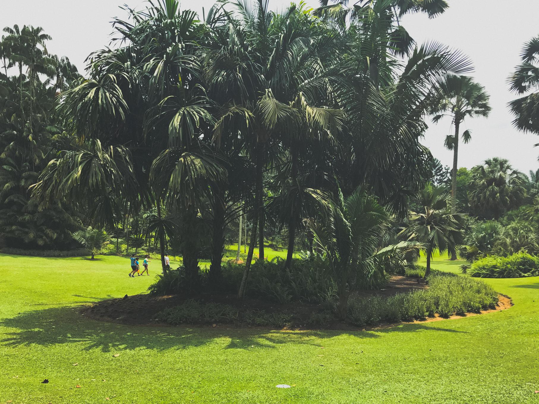 SINGAPORE__94.jpg