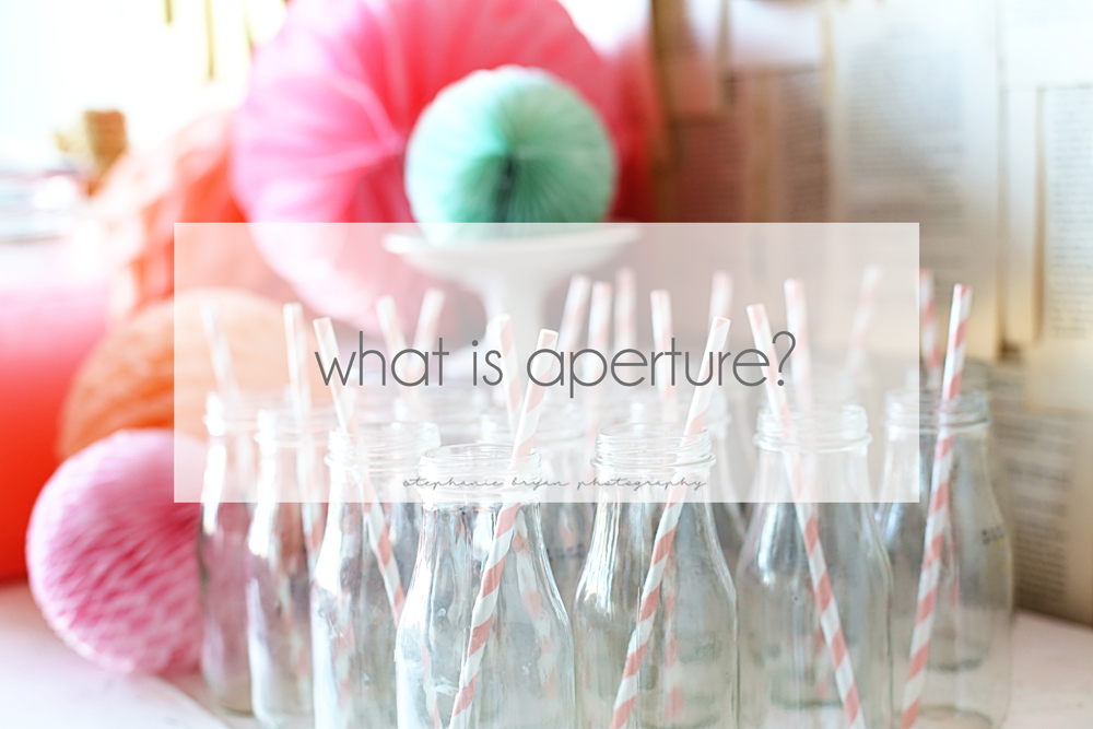 Stephanie Bryan Photography - What is aperture?
