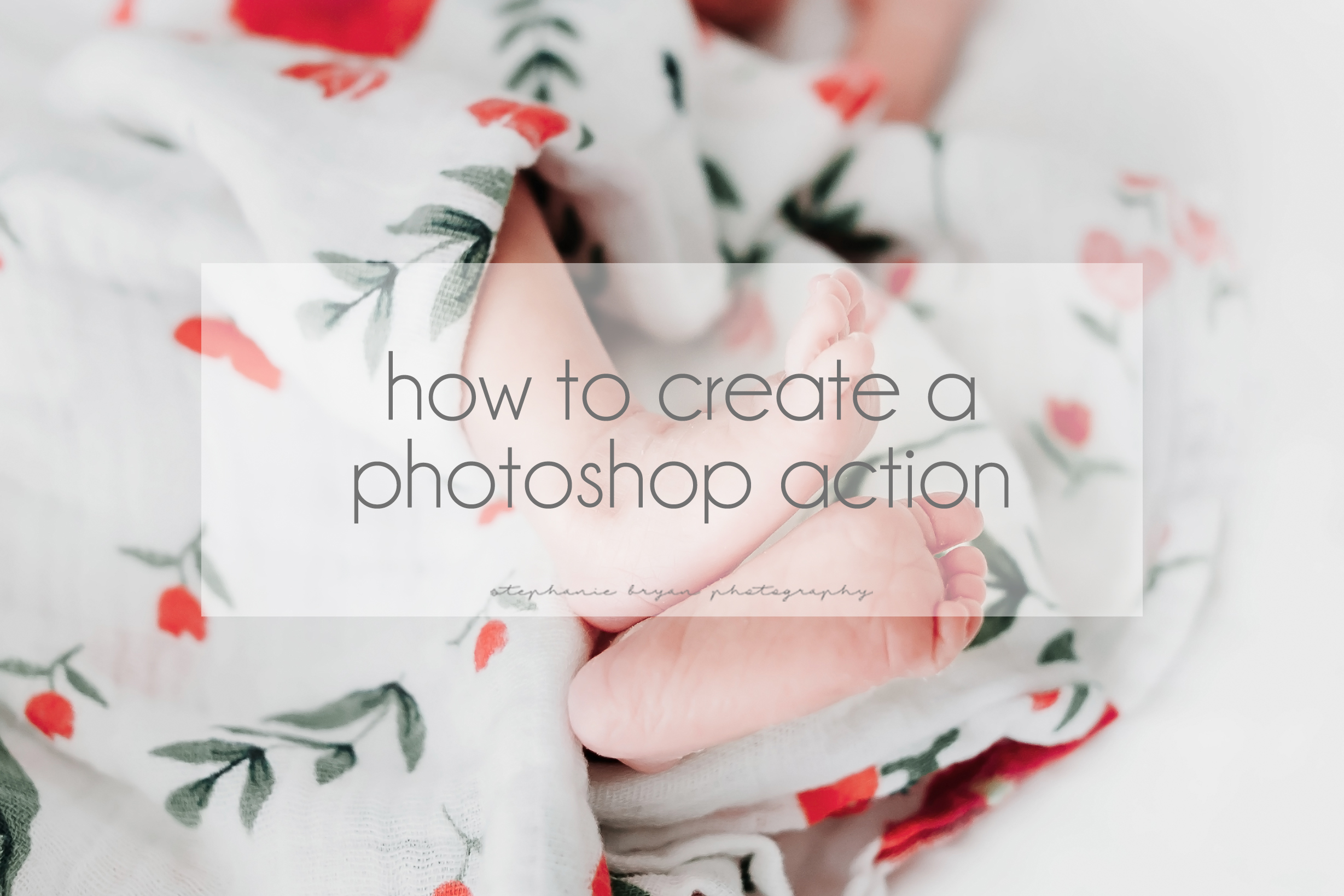 Stephanie Bryan Photography - How to create a photoshop action