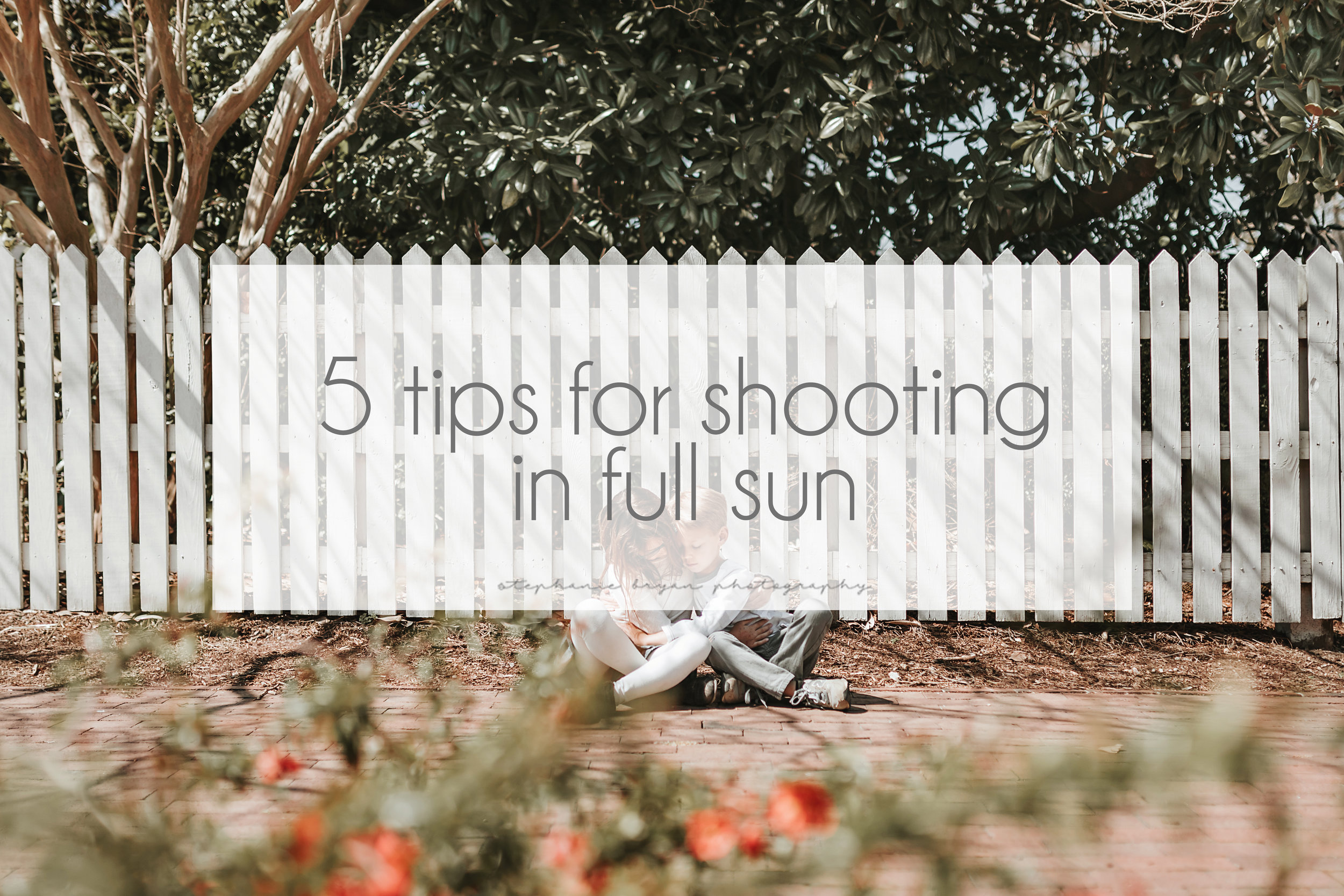 Stephanie Bryan Photography - 5 tips for shooting in full sun