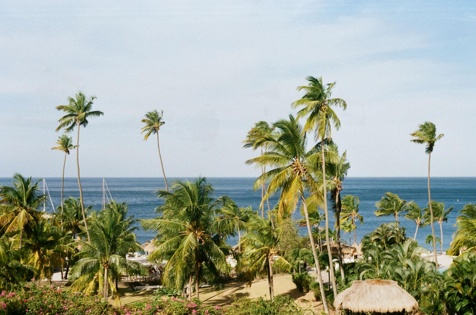 travel-photography-film-st-lucia-sugar-beach-resort