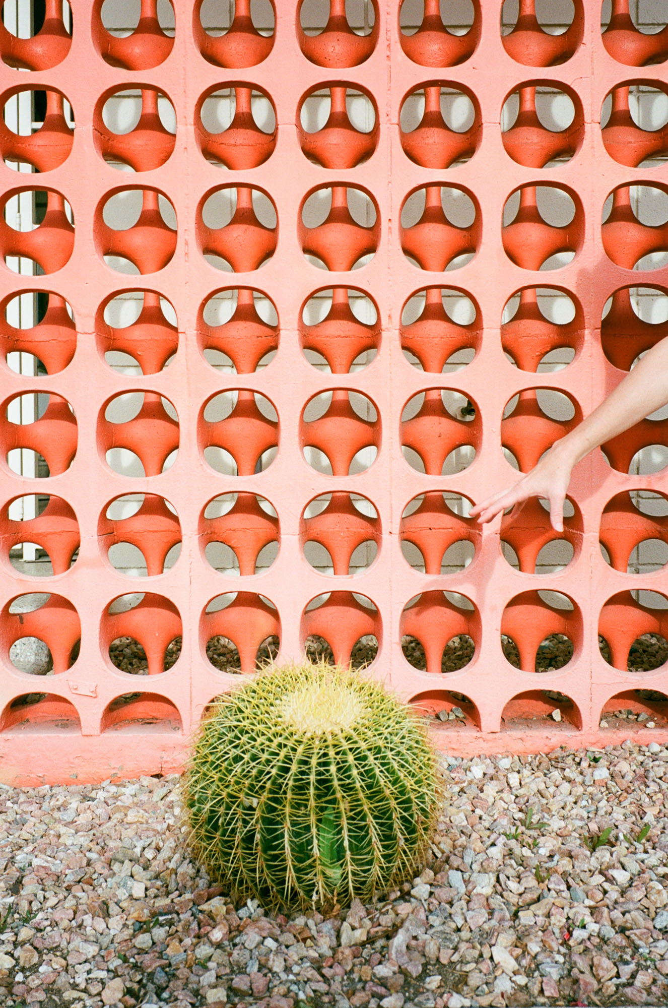 orange-wall-cactus-palm-springs-california-film-photography-travel-photographer-006
