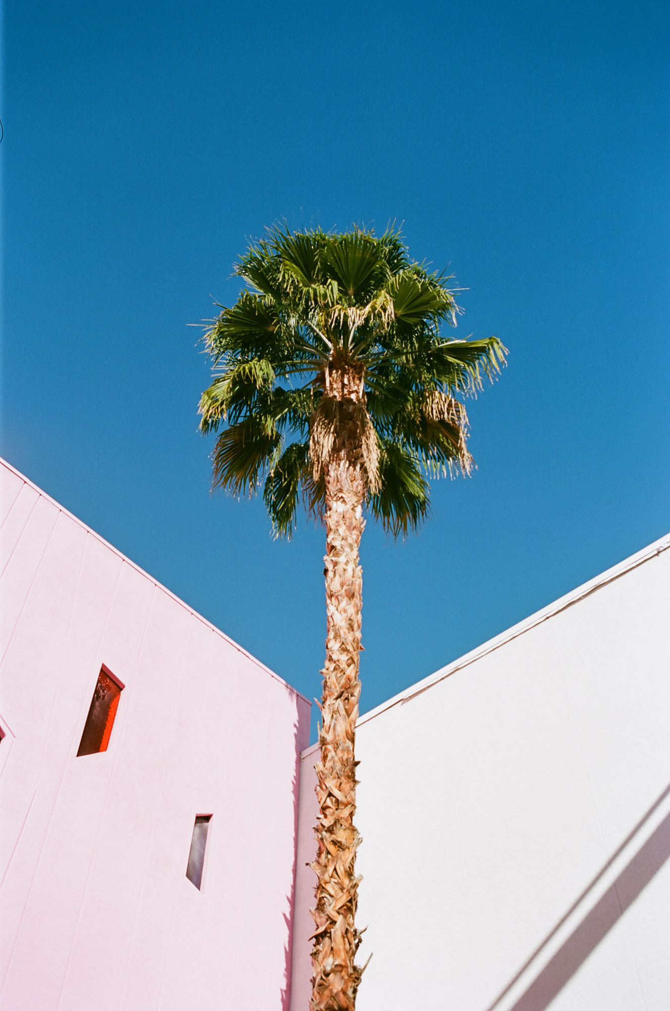 the-saguaro-hotel-palm-springs-california-film-photography-travel-photographer-007