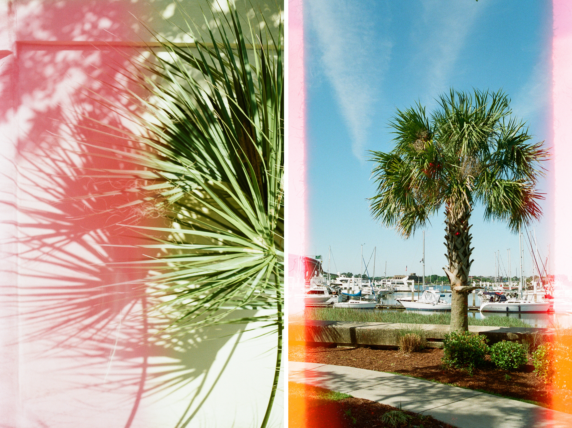 charleston-harbor-film-photography-35mm-film-analog-charleston-photographer-001