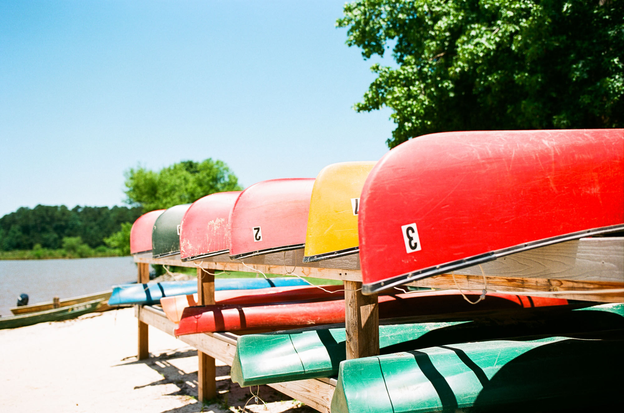 analog-photography-film-stocks-for-summer-kodak-ektar100-1