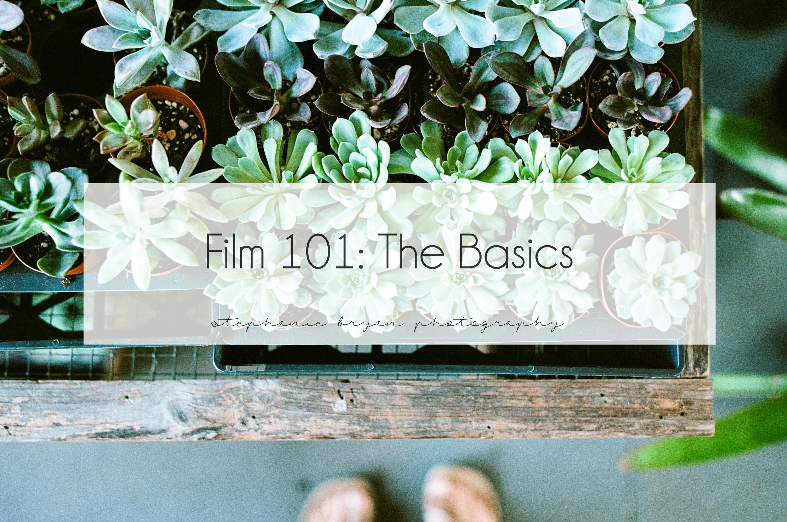 film-101-the-basics-film-camera-analogue-photography-tutorial.jpg