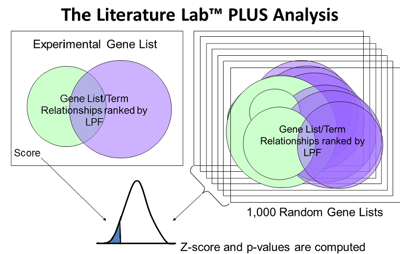 PLUS_Analysis.PNG