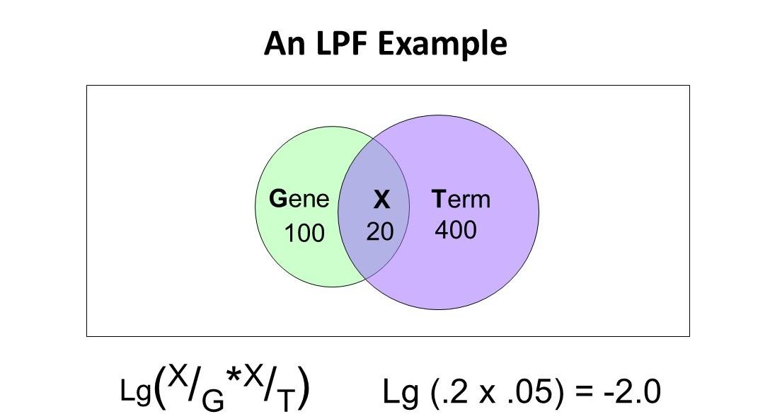 LPFTermXGene3.jpg