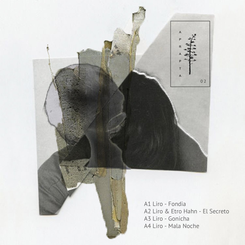 Liro & Euro Hahn - Fondia EP  Listen   Aprapta Music 02