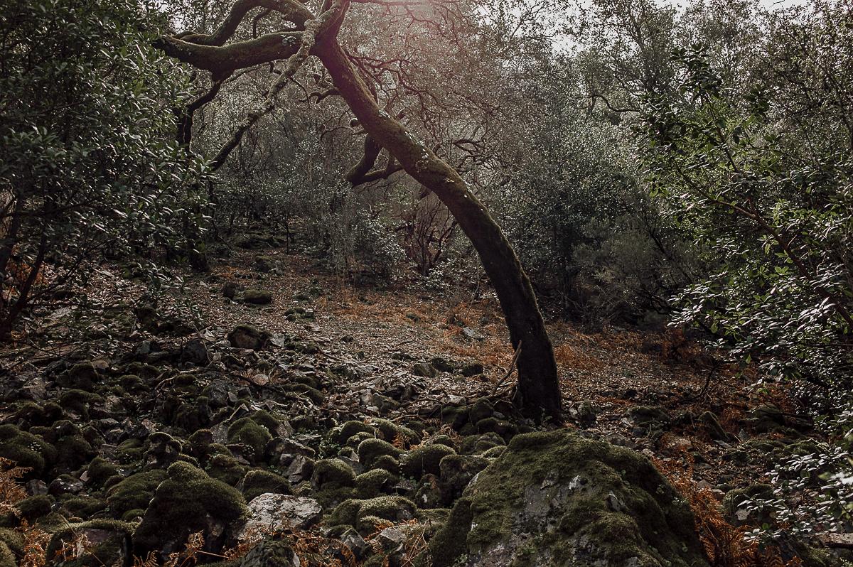 Fotografo-Salamanca-FedeGrau-16-.jpg
