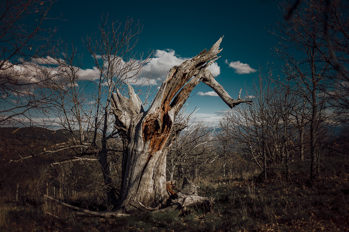 Fotografo-Salamanca-FedeGrau-32-.jpg