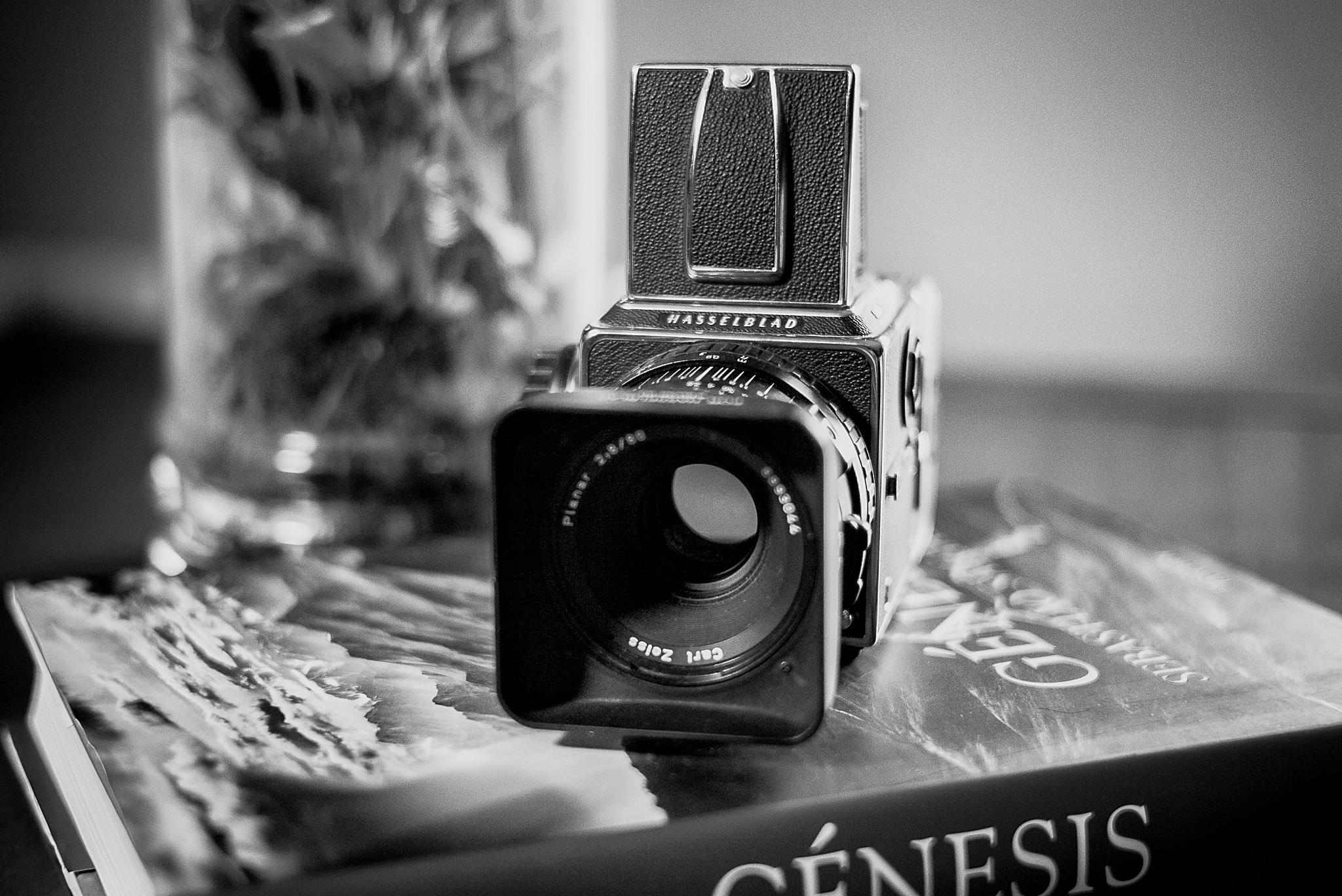 Fotografo-FedeGrau-Genesis-01.jpg