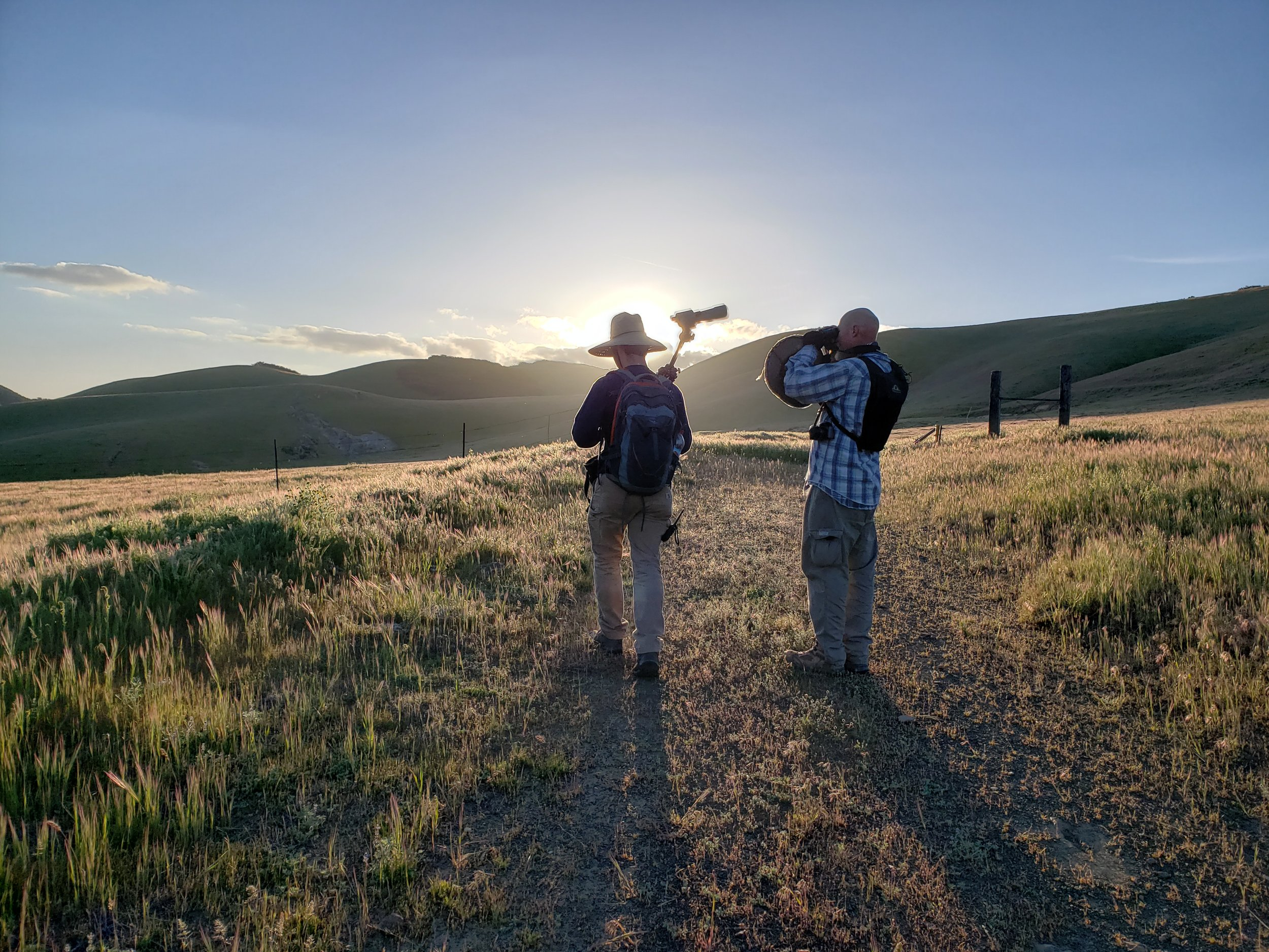 Michael Mulroy and Gordon Jenkins set up to identify bird species at dawn.