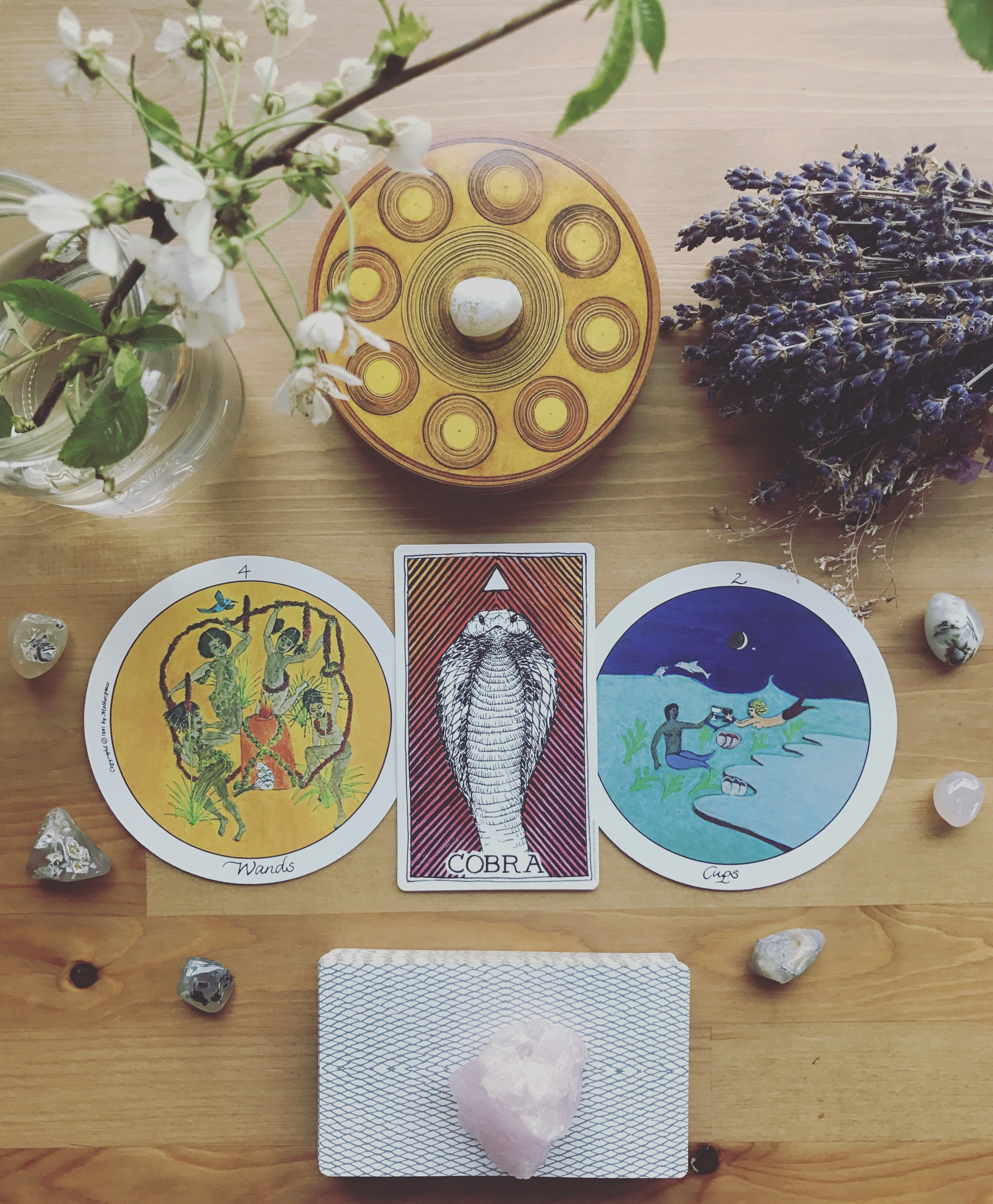 Last night, in a sort of lucid dream, I think I was initiated and united with some seriously powerful energy. After awaking to a bloody mess threatening to overflow onto my sheets at 330 in the morning, I couldn't fall back asleep. In these moments, I turn to meditation to help me back into a resting, calm mindset. As I was grounding and reaching out to the universe, my mind shifted simultaneously to a powerful visualization that came to me from my reiki healer in an especially nurturing session. As I reached out to connect with the energy of the universe, it began flowing back to me and into my heart, where a seed began to sprout. The seed birthed a green stem from my chest that grew into a beautiful, budding pink lily. As it bloomed it turned it's petals toward me, cocooning me in a shelter of divine and self love. And then I fell asleep… kind of.  I was in a sort of lucid dream, I assume (I've never been able to do this consciously). It was absolutely clear that I was vibrating with the energy of the divine feminine. I felt it in every cell of my body. And then ideas, truths, feelings of sorts began scrolling through my mind so fast I could barely capture the scrolling into words or concrete memories. It felt like a download of sorts, as my reiki healer would call it. And then I settled into a dreamless sleep that lasted well into the morning.  This morning's draw has me stunned, humbled, and struggling to accept the gift of what must have happened last night.  The four of wands is a card of initiation and celebration. It is a turning point, one that requires an advancement in responsibility but also marks significant growth. The two of cups is a union of equals. It can happen between two people, between two parts of ourselves, or even a person with magical energy or divinity. The Cobra represents our inner teacher, wise and connected to the divine.  Could it possibly be true? Was what happened last night an initiation into a deeper level of wisdom, connection, a