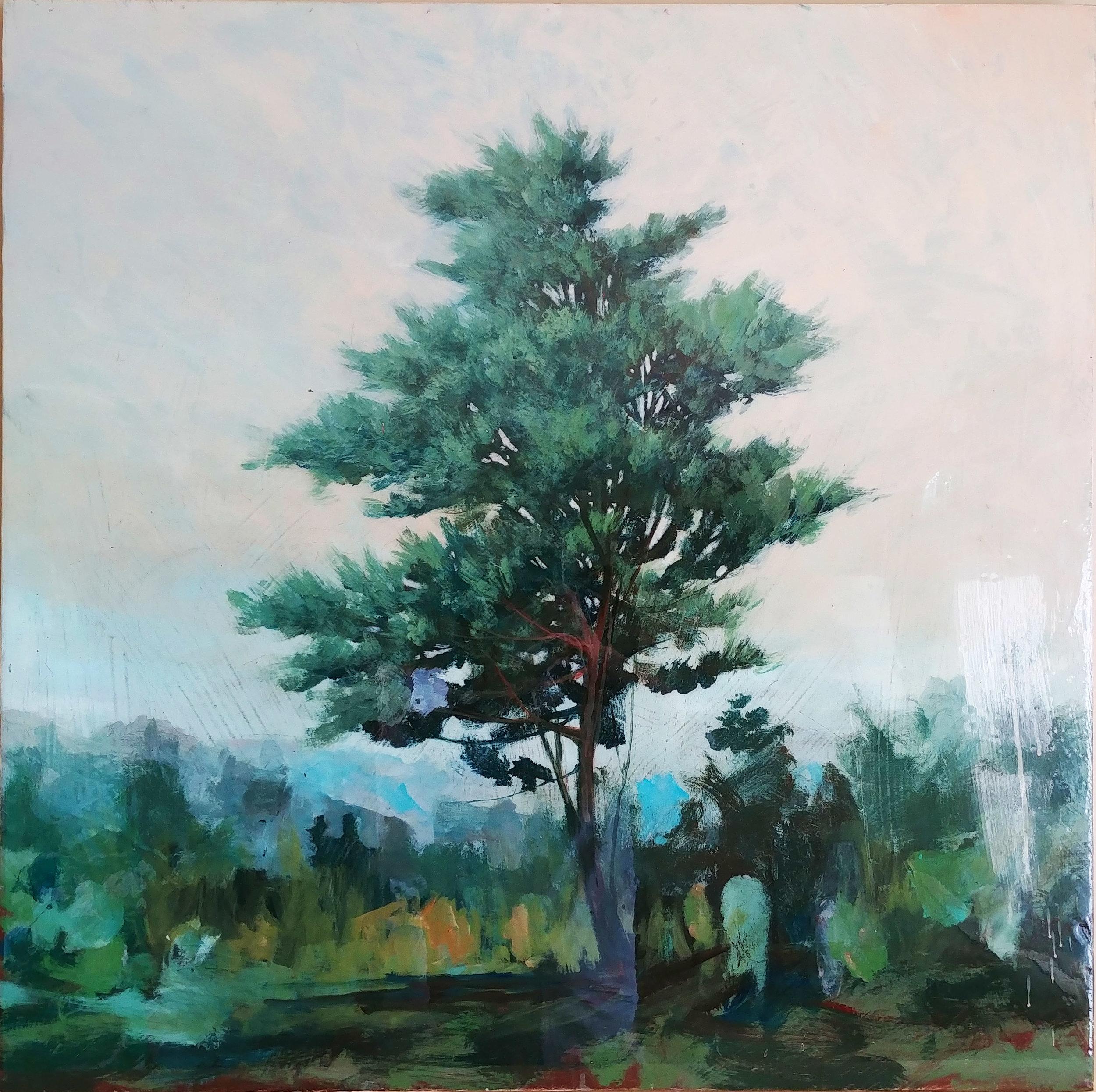 Pine 2, 2018