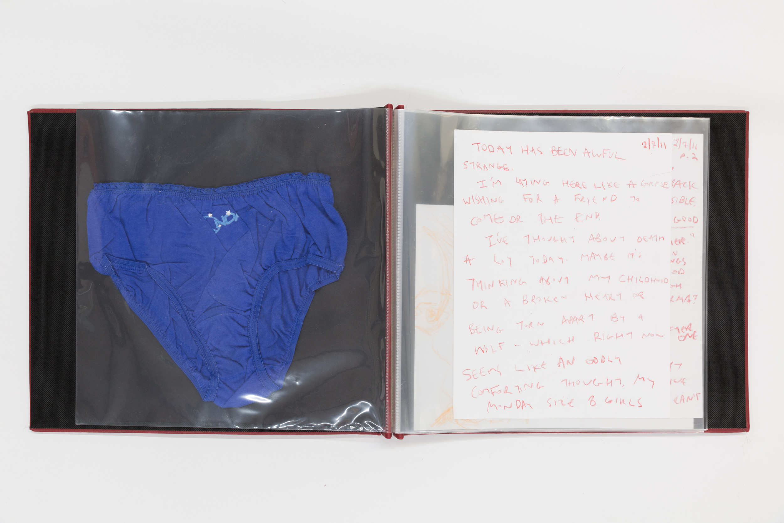 VGH_Book1_Panties.jpg