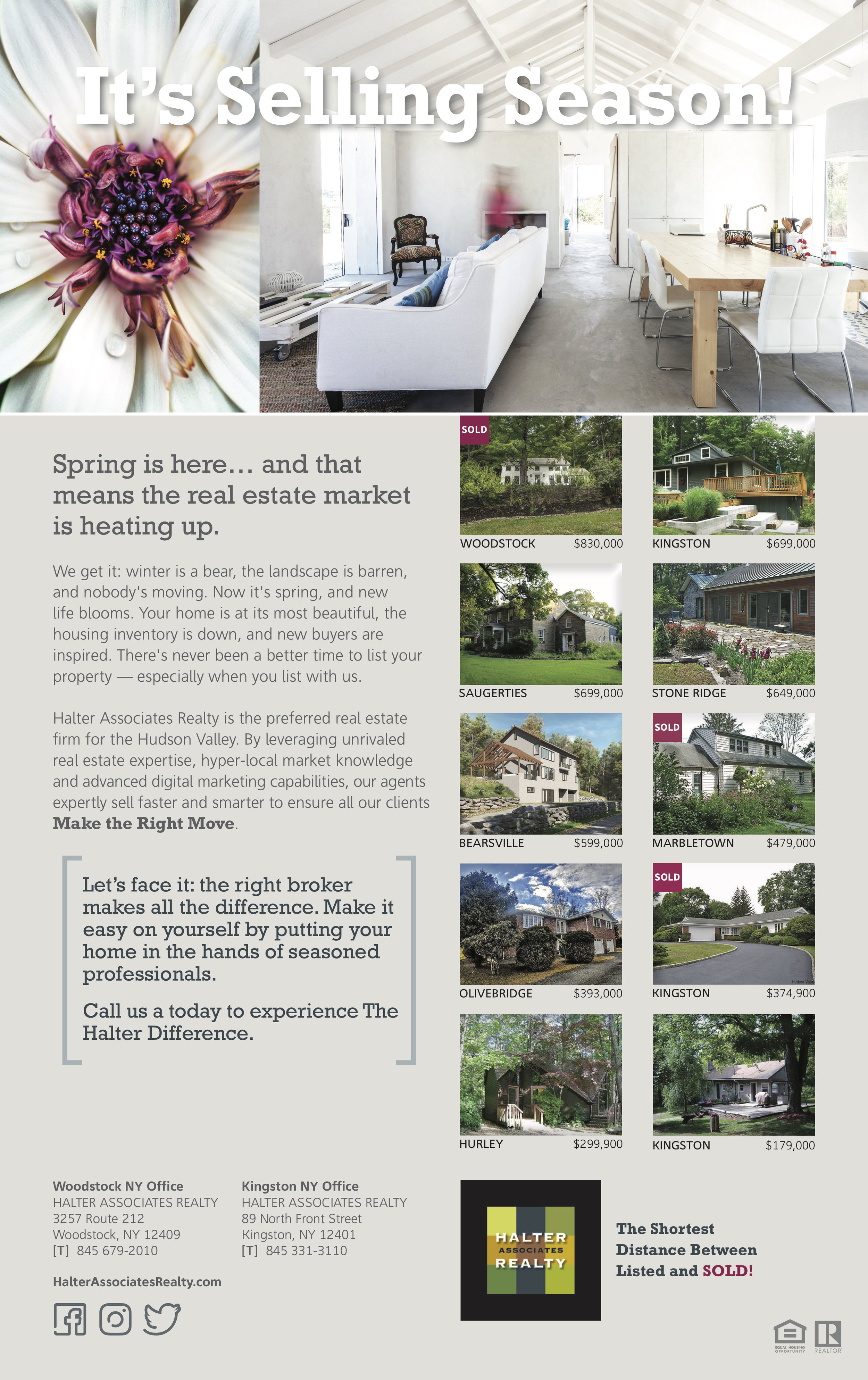 Advertising Campaign: Spring Ad