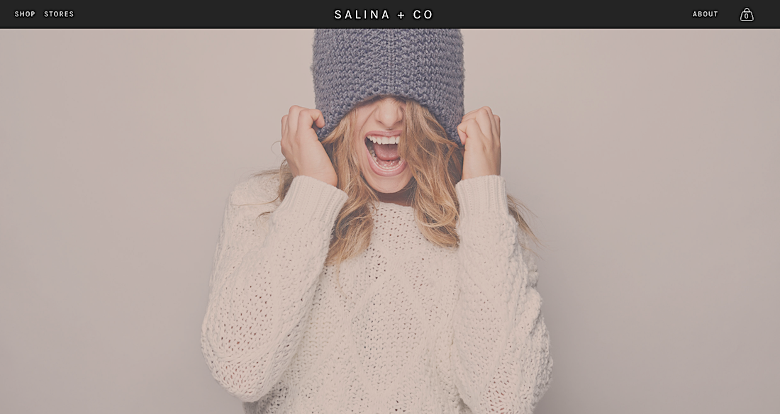 Salina + Co - Sample of the ECOMMERCE Website Offer
