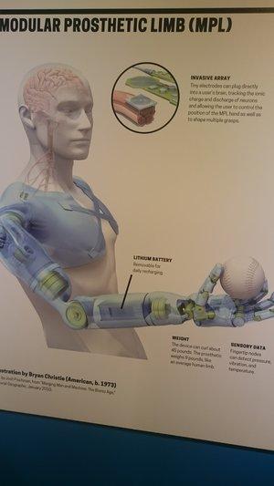 Visual Prototype of a modular prosthetic limb design  on Display at MODA