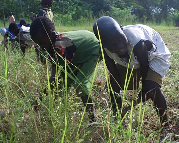 BVC Togo 2010 Greg Sullivan Colin Cote (21).jpg