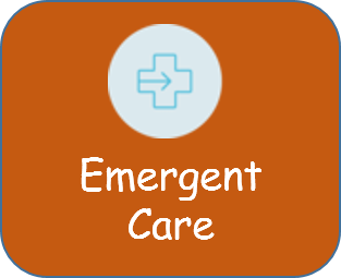 Emergent care - button.png