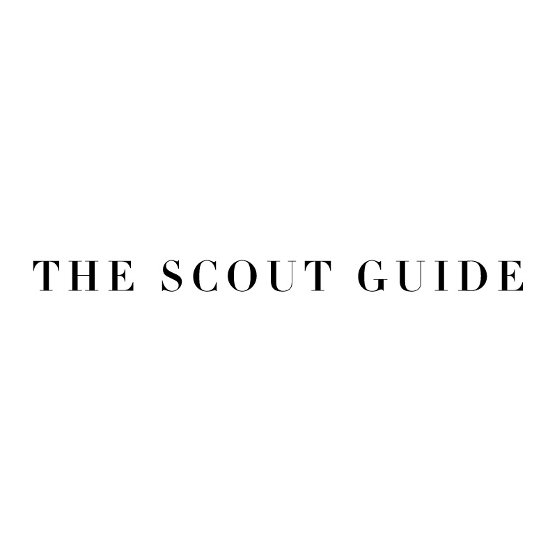 TheScoutGuide.png