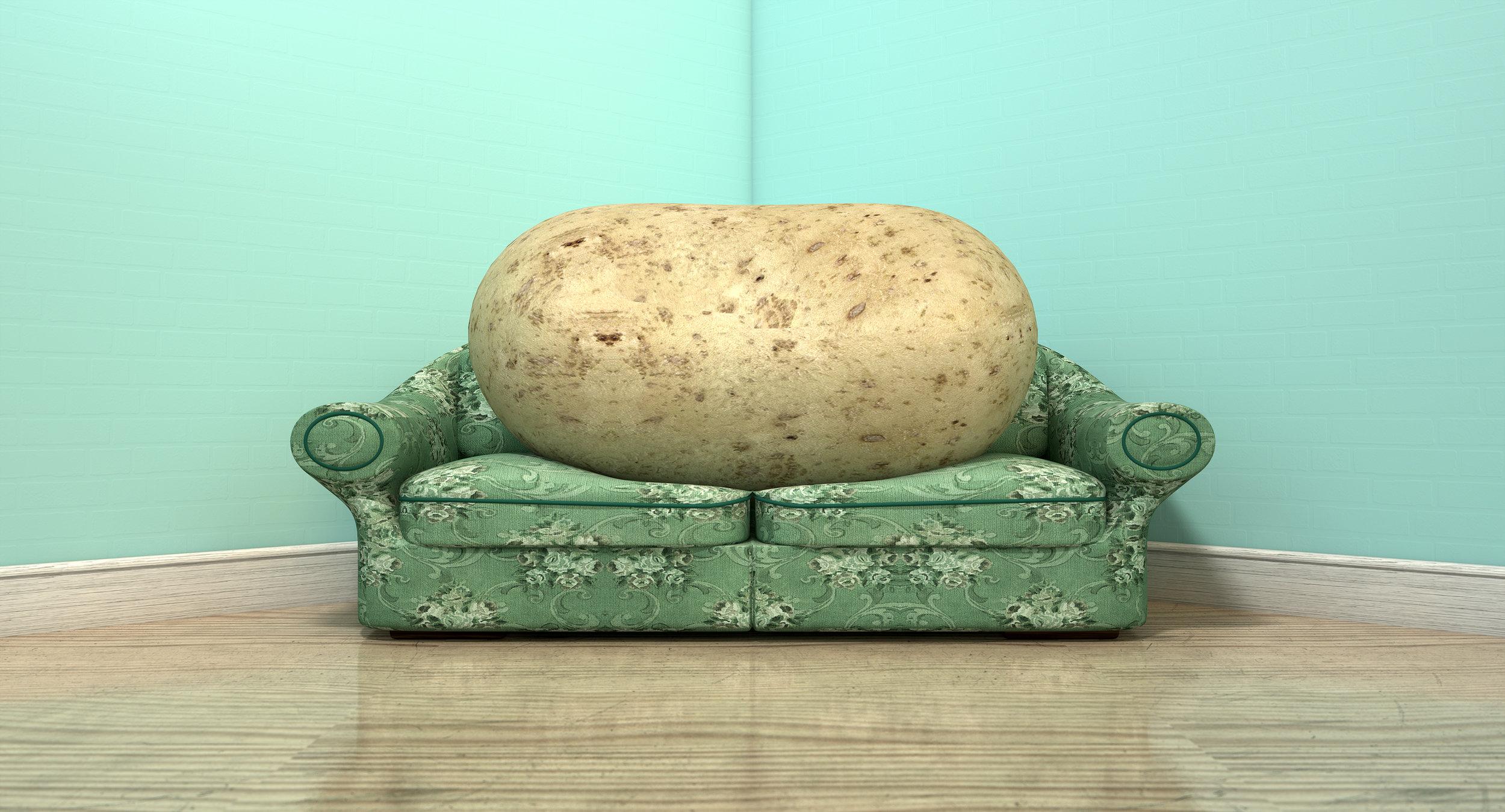 bigstock-Couch-Potato-On-Old-Sofa-76533155 2.jpg