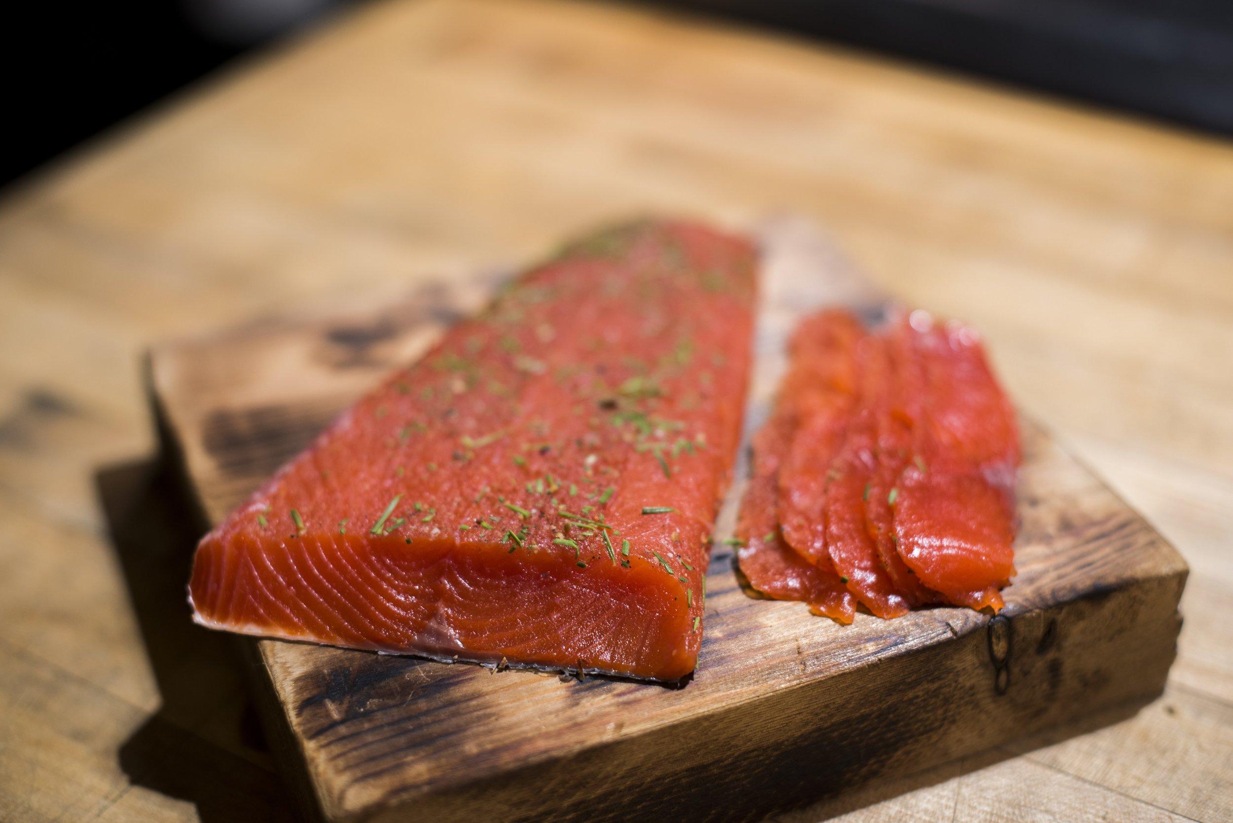 DSC_5386_salmonfinal-min.jpg