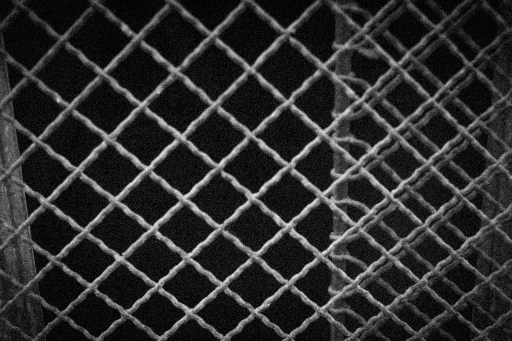 dead-budapest-rfm-2012-14.jpg