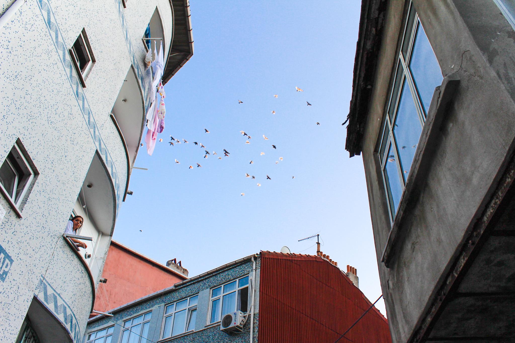 istanbul-peeks-2010-rfm-life-17.jpg