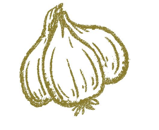 Garlic 6361917180 5.jpg