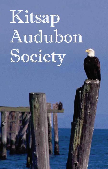 Kitsap Audubon Brochure