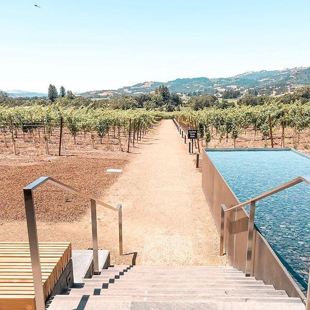 Stairway to (wine) heaven 😍🍷#silveroakcellars #alexandervalley #sonoma #destinationluxetravel #clevelandtravelagent #localgirlgangcle