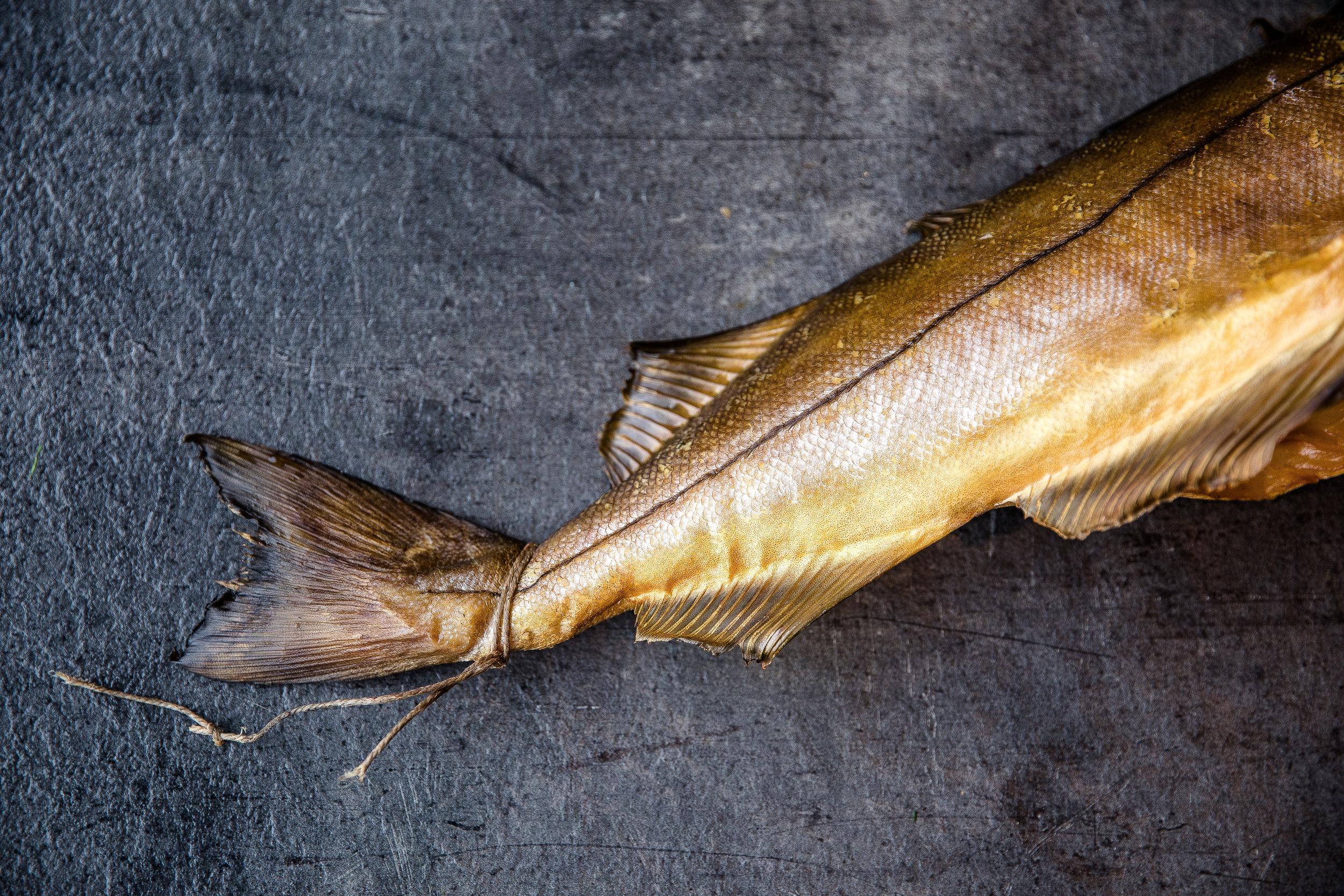 fiskeriet_080318_0204.jpg