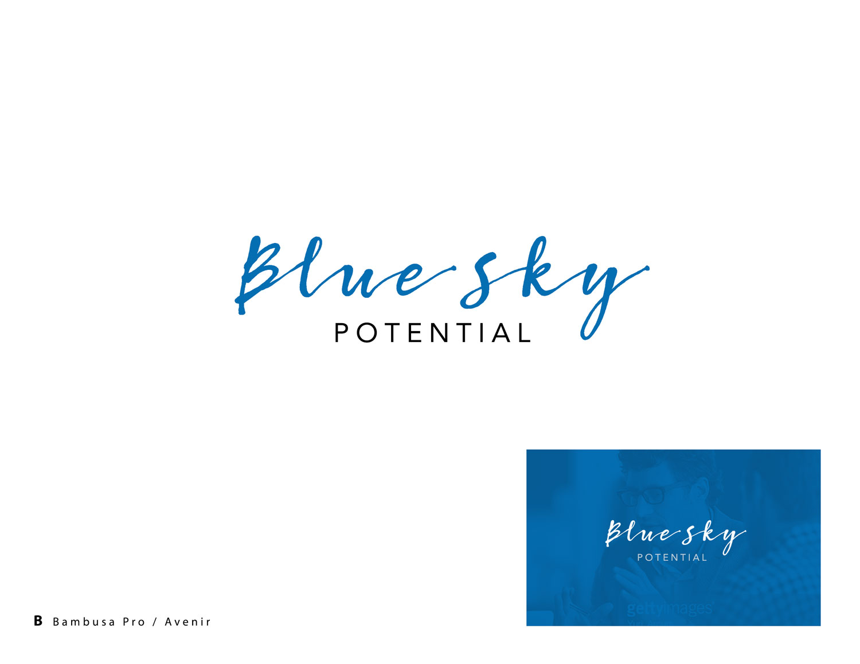 Blue-Sky-Identity-Layouts-B.jpg