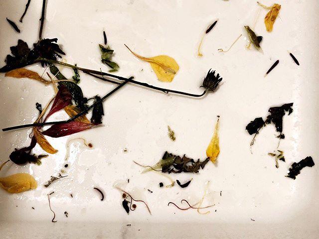 Flower garbage. #beautyiseverywhere #thevintagemodernhome #vintagemodern #flowerpower #vintagestyle #vintagelove #vintagehome #homedecor #interiors #interiordesign #minneapolis #minnesota